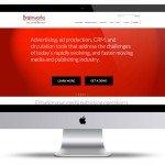 vortex-miami-web-design-brainworks